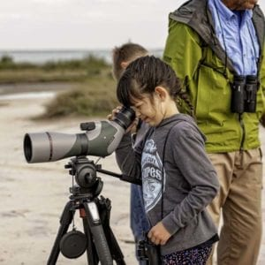 Future birder and telescope - getting kids into nature
