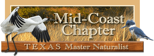 Mid-Coast Chapter, Texas Master Naturalist header image