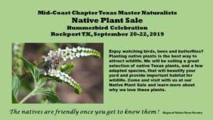 MCTMN Plant Sale Promo
